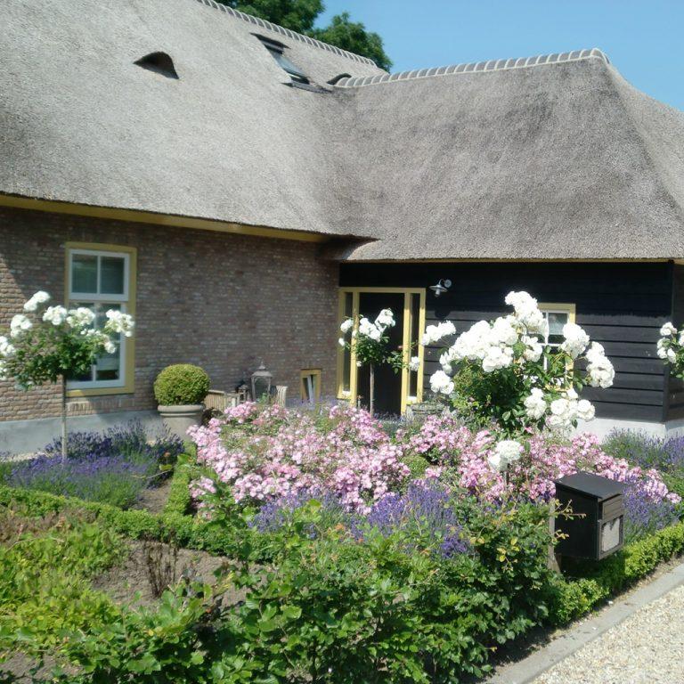 boerderij landelijk bloemen