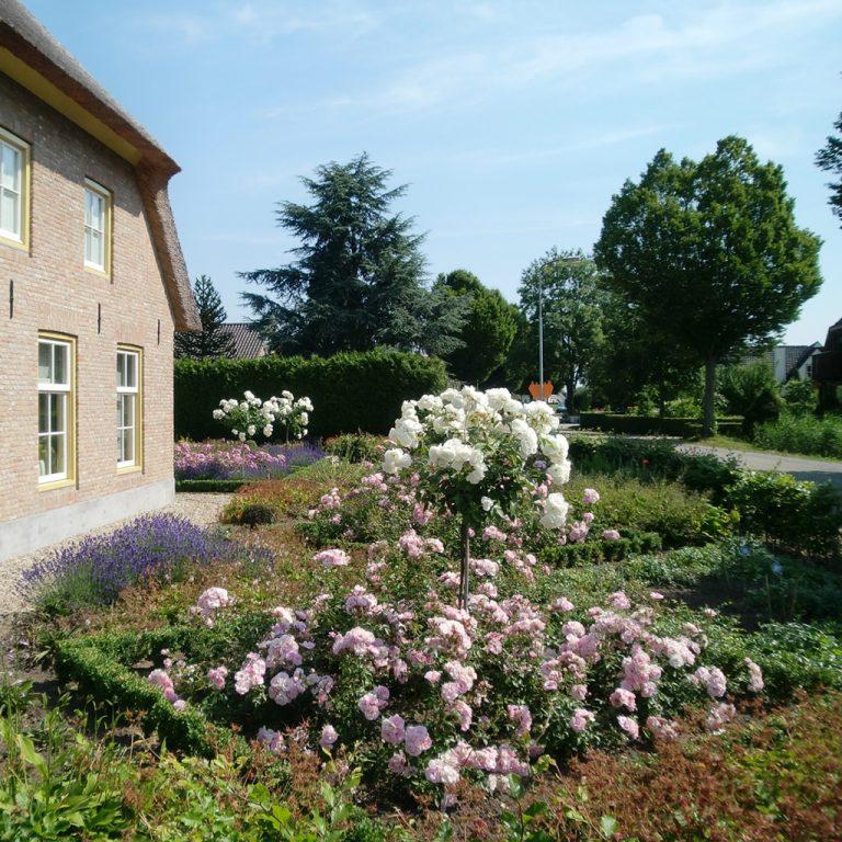 boerderij landelijk bloemperk