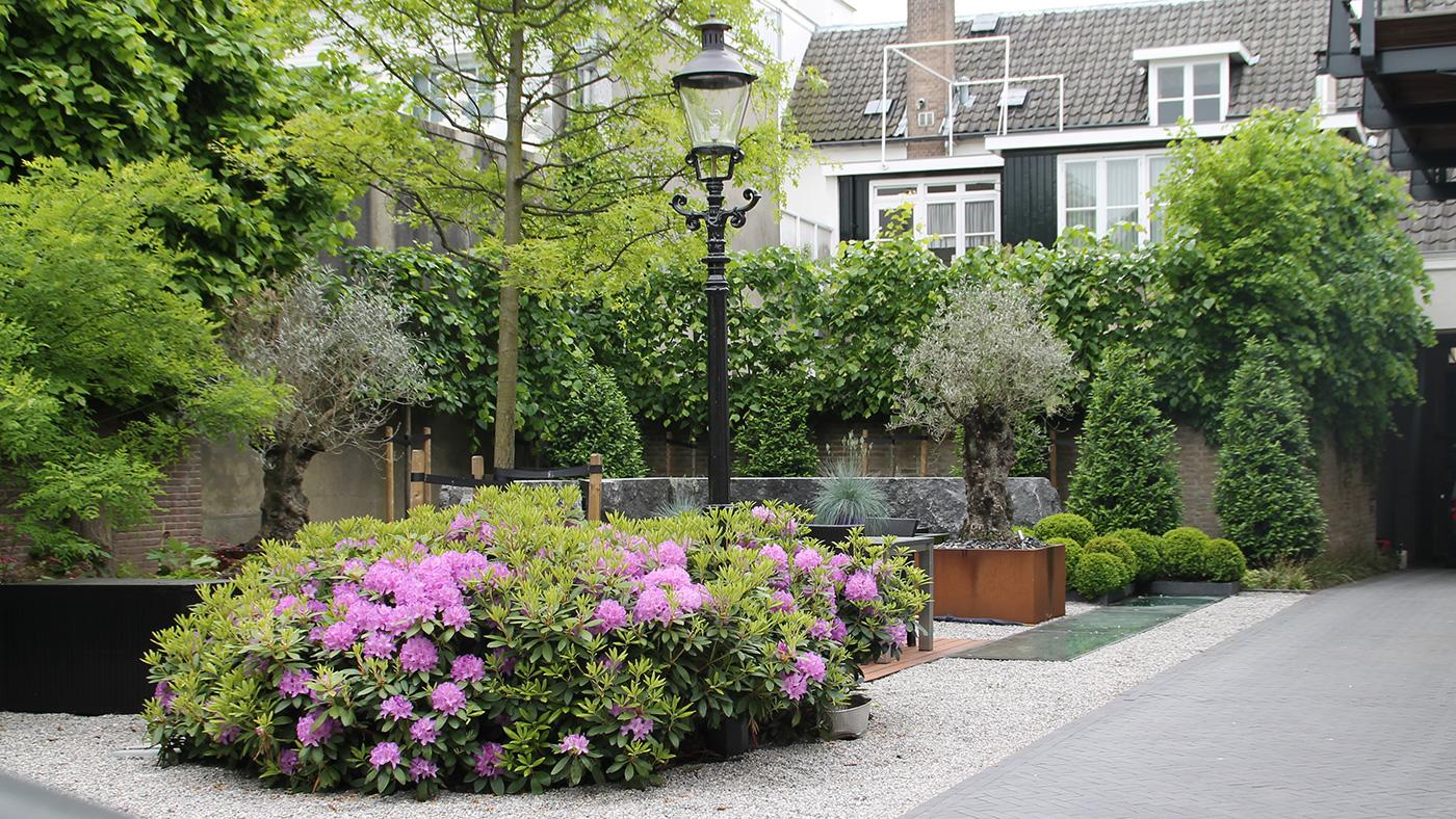 stadstuin terras planten