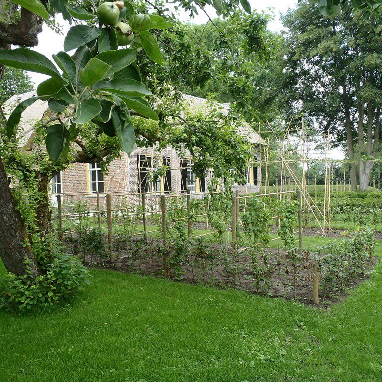 boerderij groentetuin