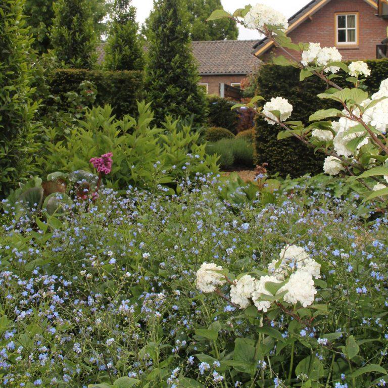 speelse tuin bloemen
