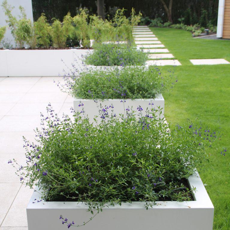 strakke tuin bloembakken