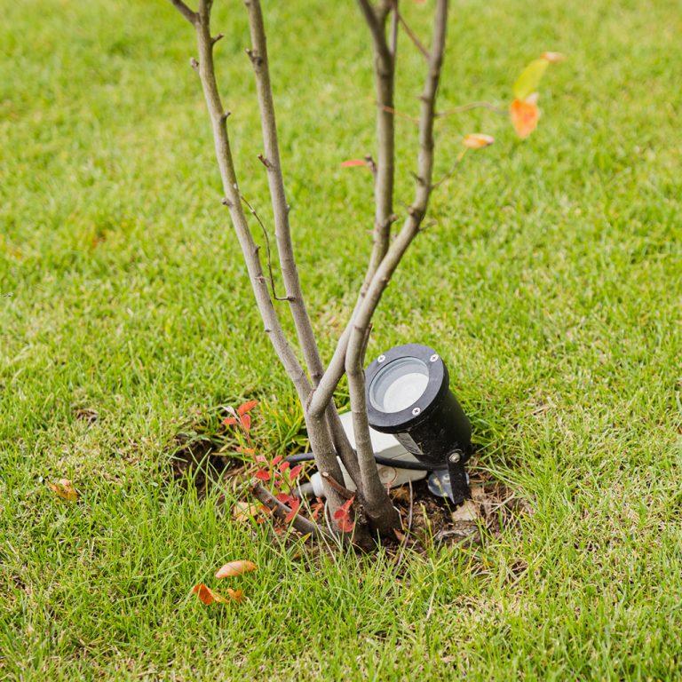 strak landelijk tuin belichting